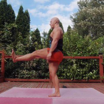 Standing Leg Extension Rotation